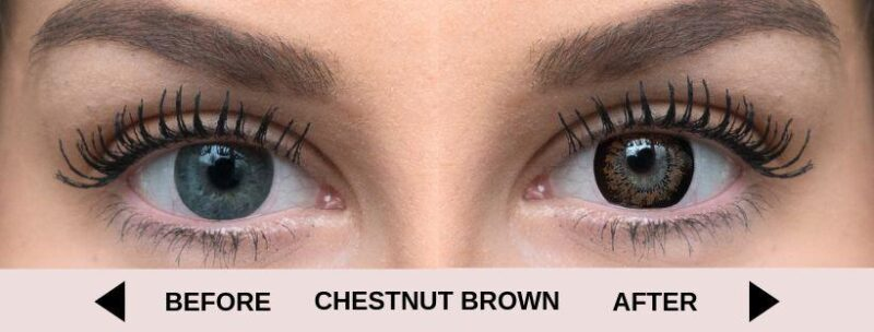 Before chestnut brown light 5   Elegant Optic