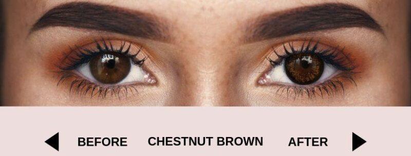 before chestnut brown dark 4   Elegant Optic