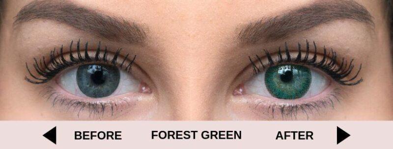 before forest green light 5   Elegant Optic