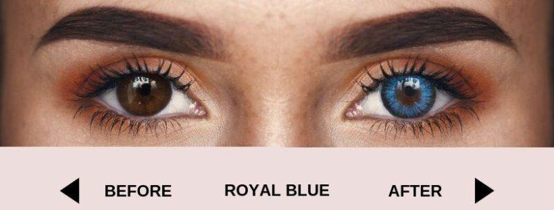 before royal blue dark new 4 | Elegant Optic