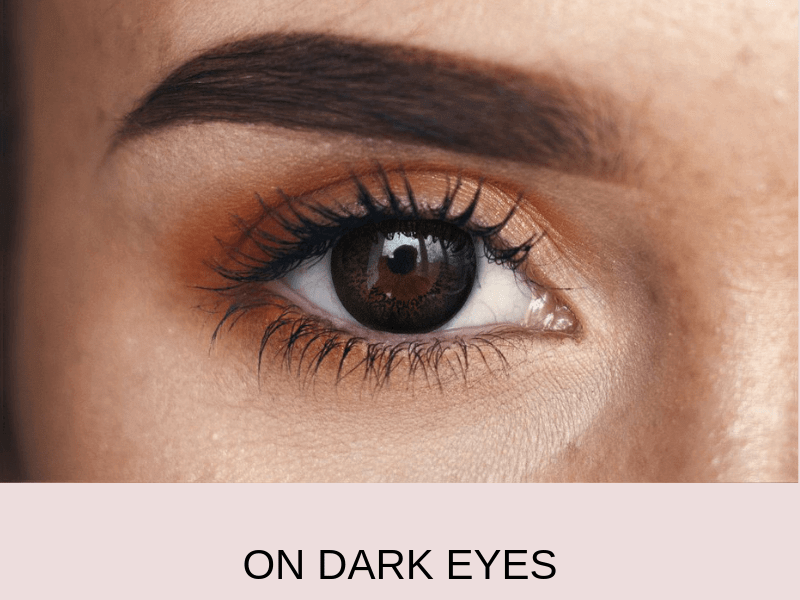 ebony dark dark 2   Elegant Optic