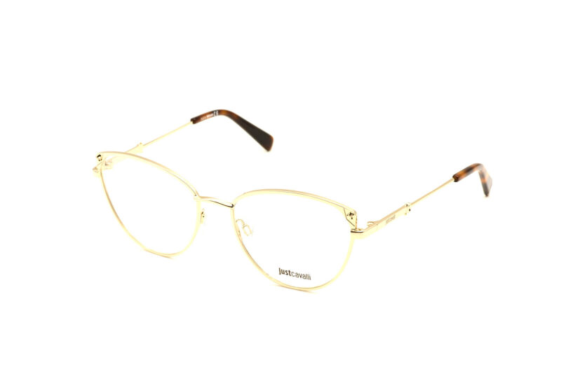 DSC0099 copy | Elegant Optic