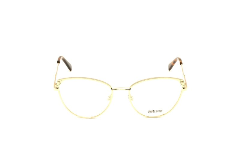 DSC0100 copy | Elegant Optic