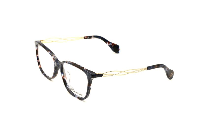 DSC0247 copy   Elegant Optic