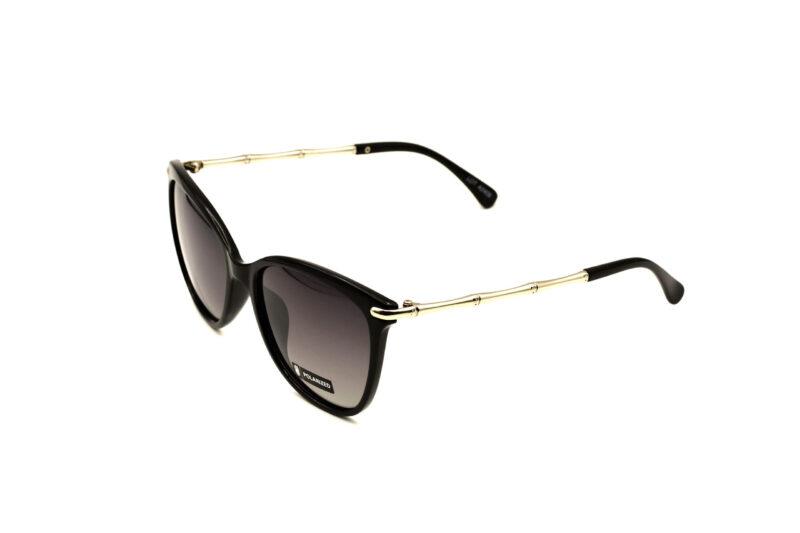 O.SOARE POLAR VIEW AZ6310 A POZA3 | Elegant Optic